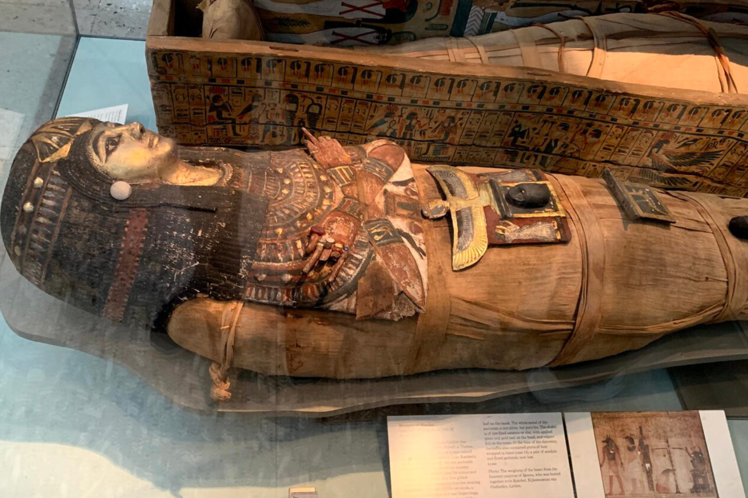 british museum private tour guide mummy egypt